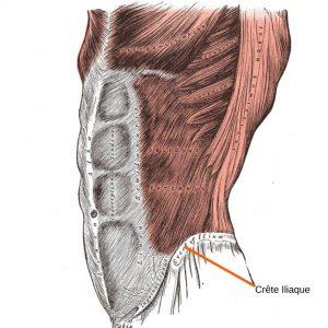 stretchingpro-douleurs-sacro-iliaque-crete-iliaque-anterieur-2