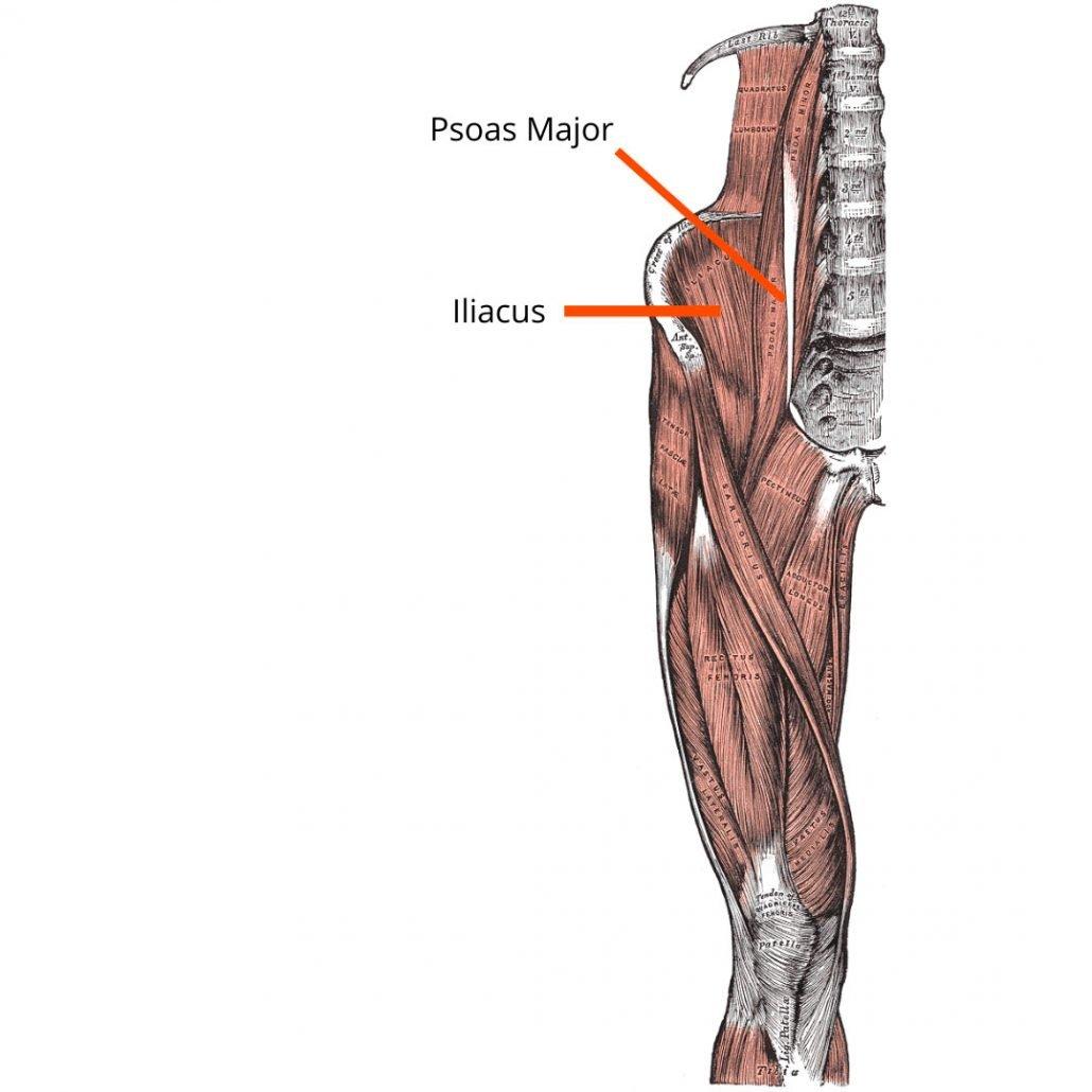stretchingpro-douleurs-psoas-iliacus