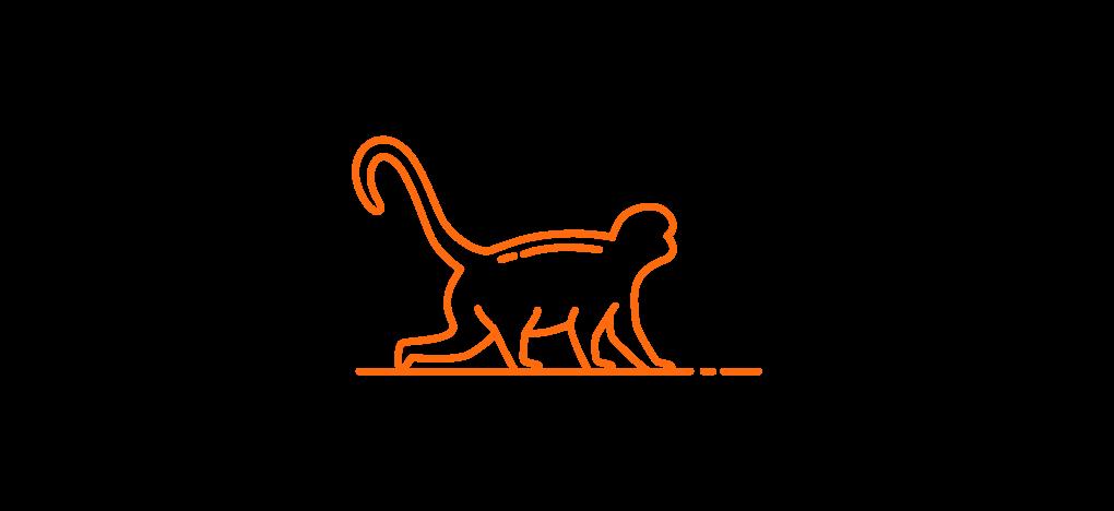stretchingpro-logo-singe-orange.png