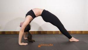 stretchingpro-souplesse-épaules-photo